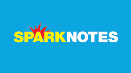 What's so bad about SparkNotes?
